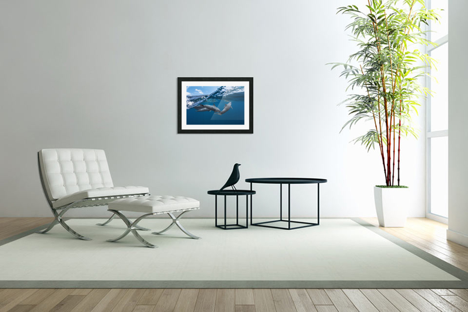 Dolphins in Custom Picture Frame