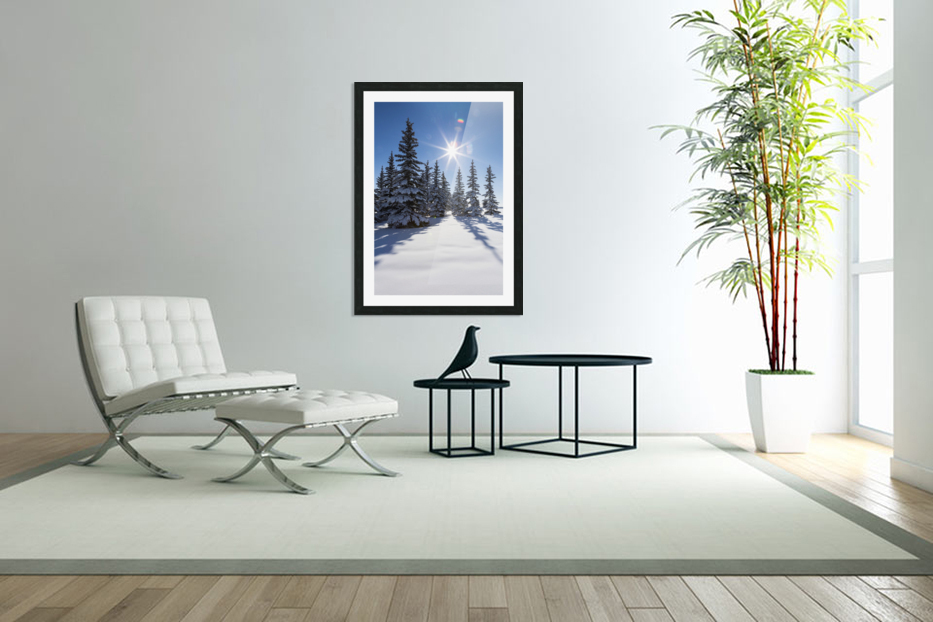 Snow covered evergreen trees on a snow covered hillside with blue sky and sun burst; Calgary, Alberta, Canada in Custom Picture Frame