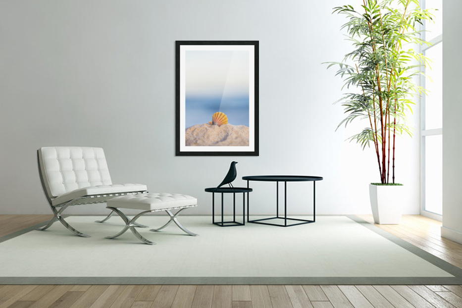 A rare rainbow color Hawaiian Sunrise Scallop Seashell, also known as Pecten Langfordi, in the sand at the beach at sunrise; Honolulu, Oahu Hawaii, United States of America in Custom Picture Frame