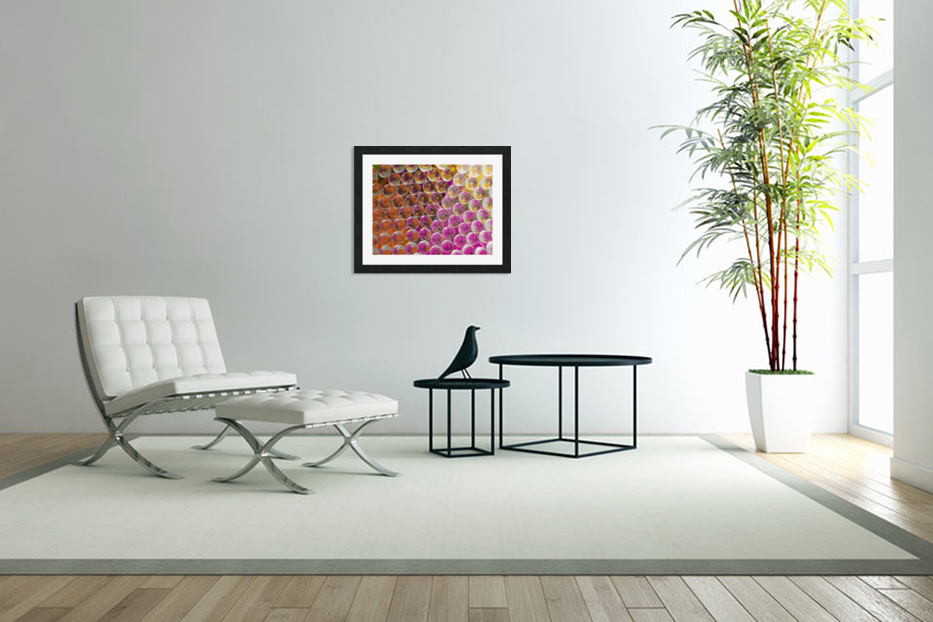 FLOWERS REFRACTION 5 in Custom Picture Frame