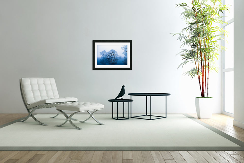 nature in Custom Picture Frame