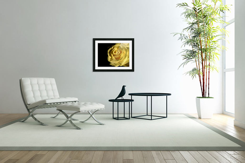 Yellow dew in Custom Picture Frame