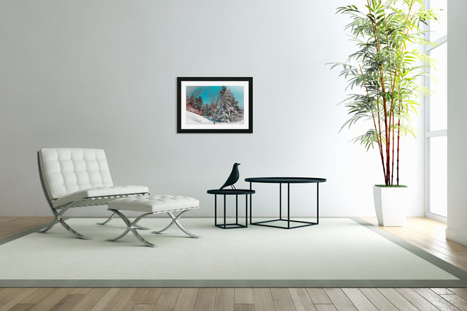 Snowy Pine Trees in Custom Picture Frame