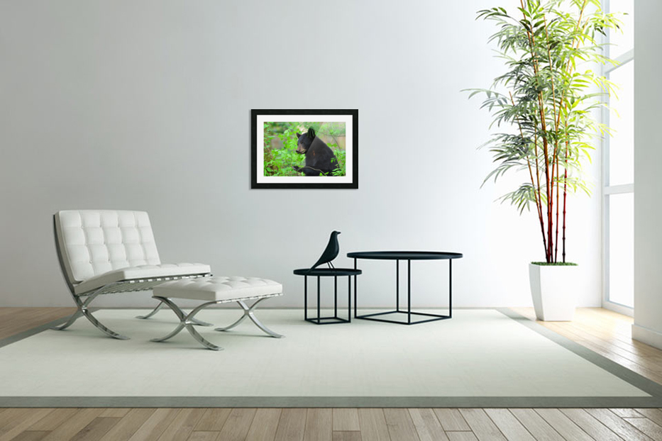 3646-Bear Lunch in Custom Picture Frame