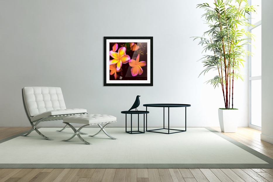 Frangipanis On The Glow in Custom Picture Frame