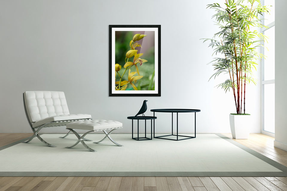 Yellow flowers stem in Custom Picture Frame