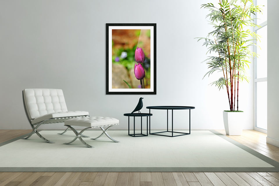 Simple Beauty in Custom Picture Frame