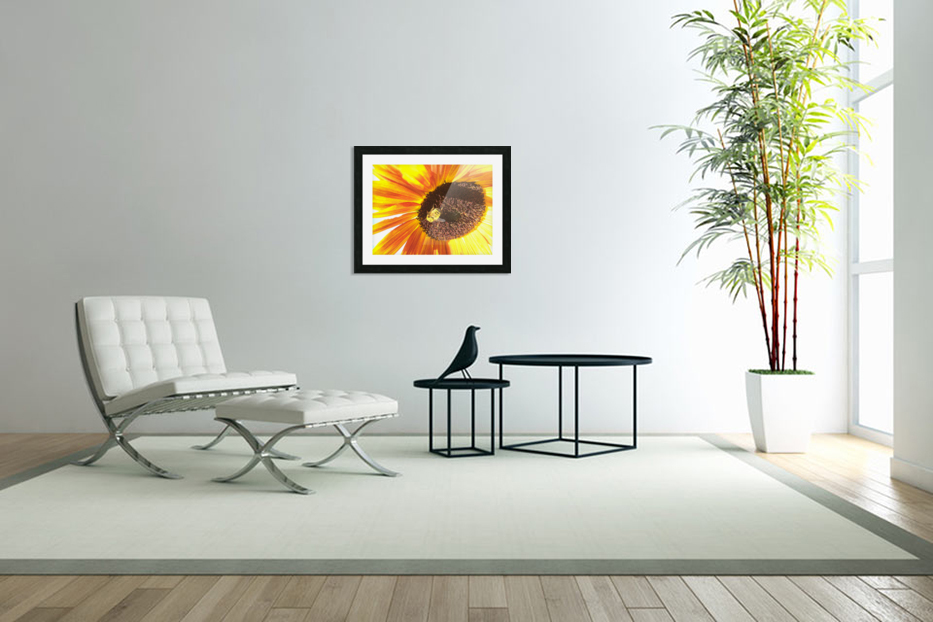 Bumblebee on Sunflower in Custom Picture Frame