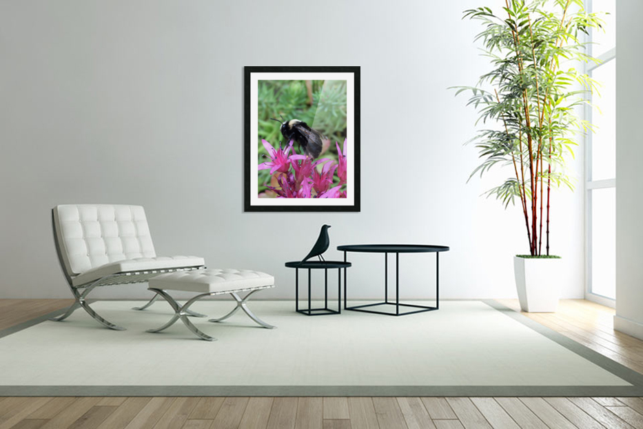 Black Bumble Bee in Custom Picture Frame