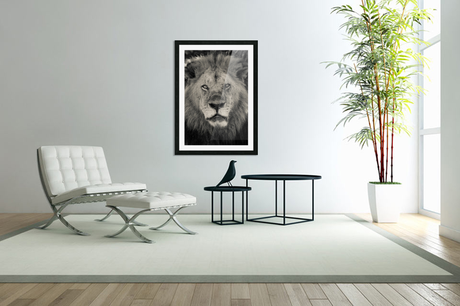 The King of South Africa - 2 in Custom Picture Frame