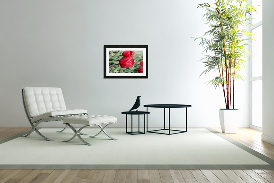 Tulips Red in Custom Picture Frame
