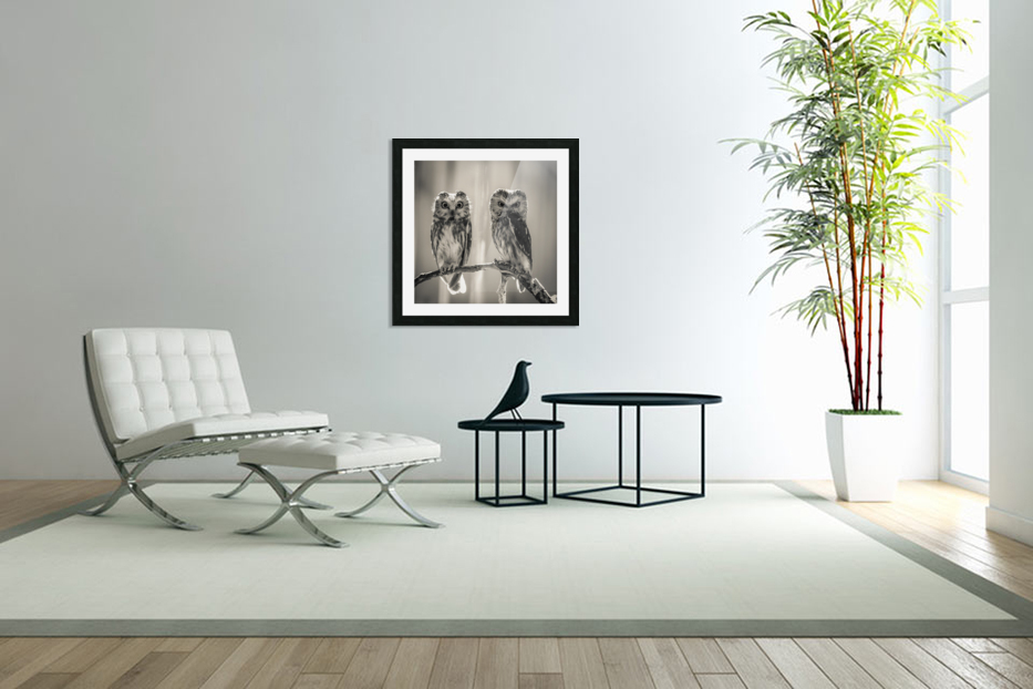 The Odd Couple - B&W in Custom Picture Frame