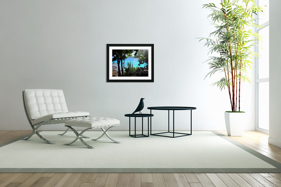 Tropical Waters 1 in Custom Picture Frame