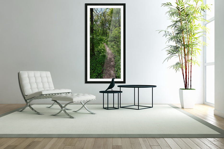 trail in Custom Picture Frame