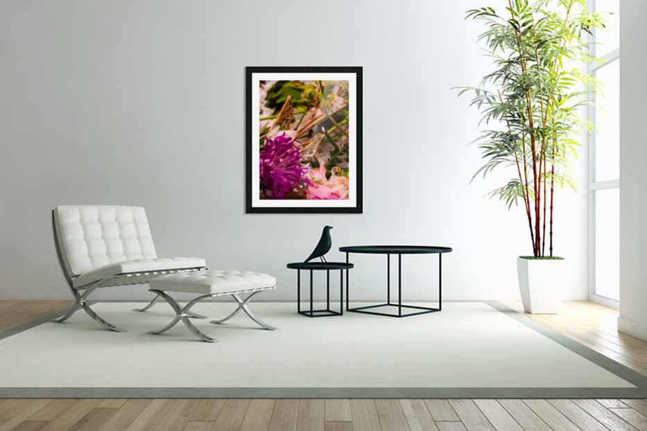 Offerings  in Custom Picture Frame