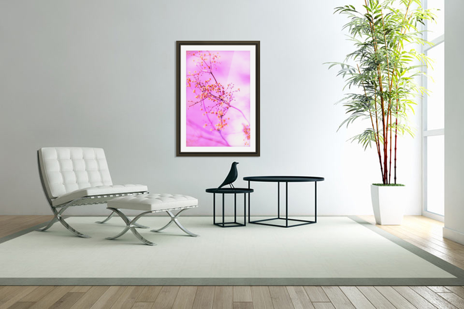 paint it pink  in Custom Picture Frame