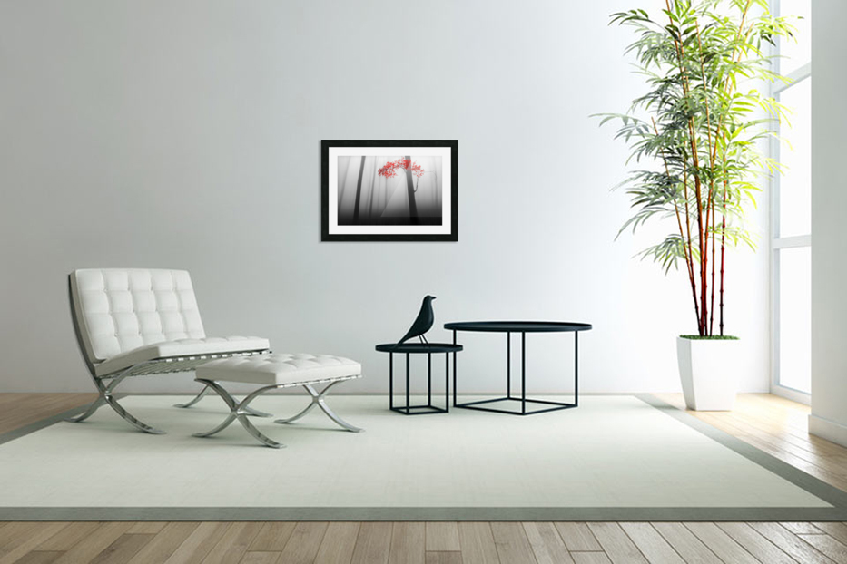 illusion in Custom Picture Frame