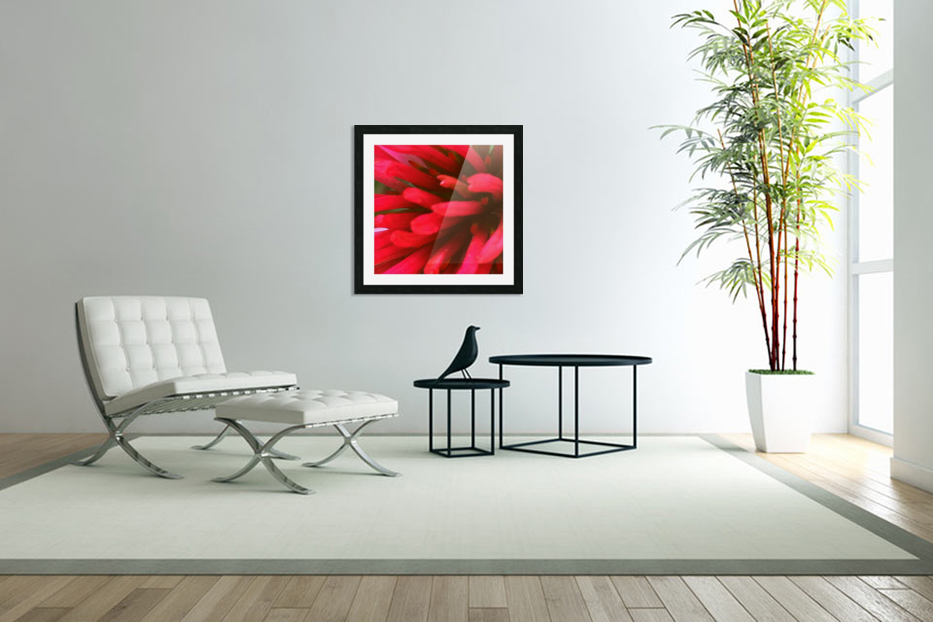 Red blossom  in Custom Picture Frame