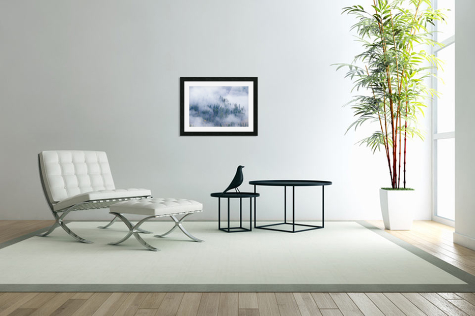 FOREST IN THE CLOUDS in Custom Picture Frame