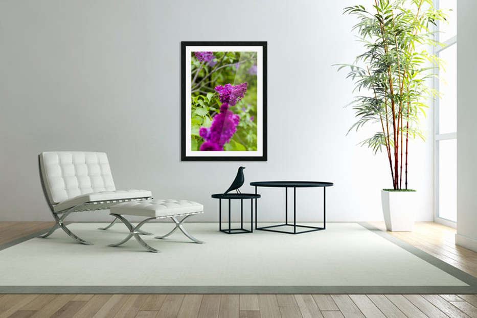 Purple Lilac Blossoms 2 in Custom Picture Frame