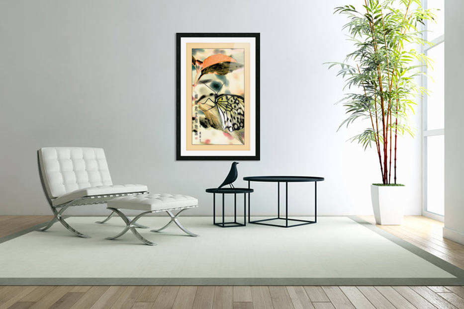 Papillon chinois  in Custom Picture Frame