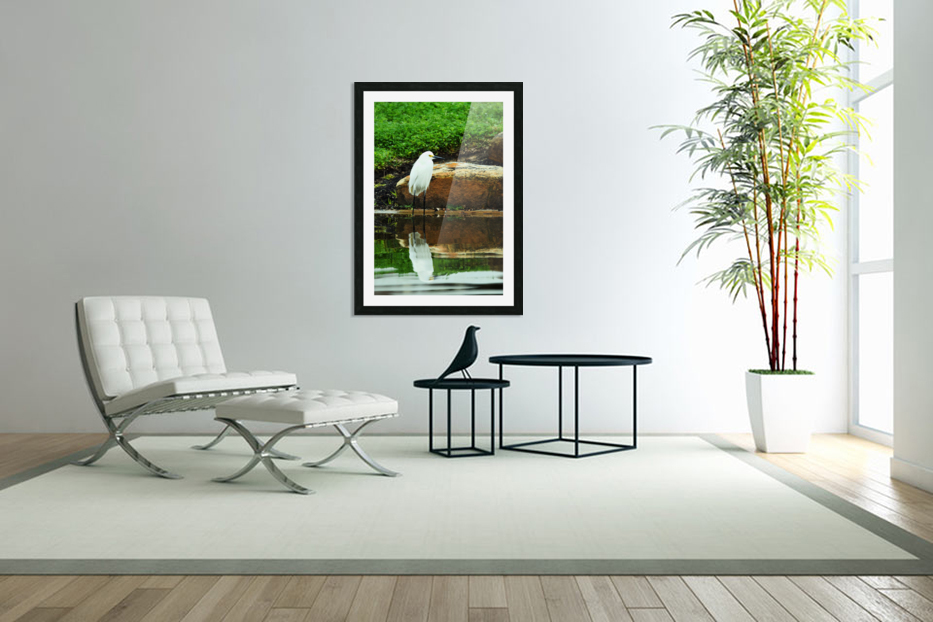 Snowy Egret in Custom Picture Frame