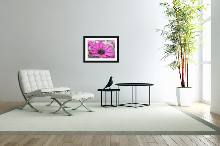 Purple Flower Photograph in Custom Picture Frame