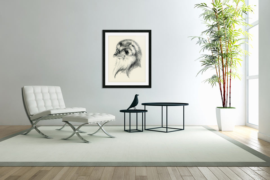 Black Australorp Chick in Charcoal in Custom Picture Frame