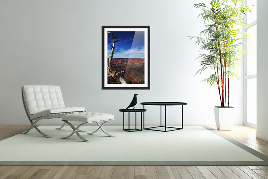 Grand Canyon framed by tree in Custom Picture Frame