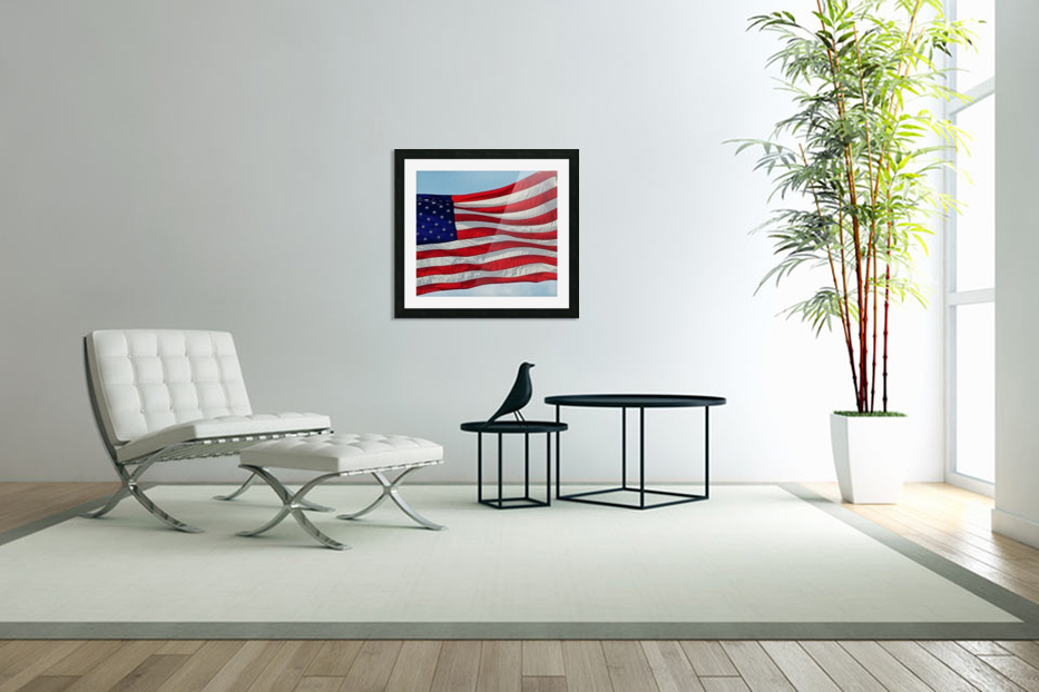 America the Beautiful in Custom Picture Frame