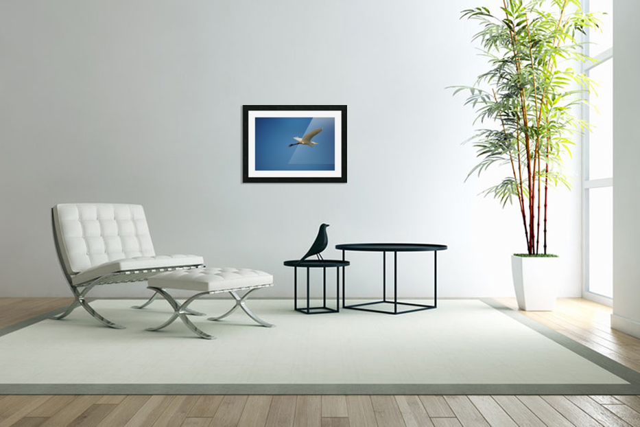 Egret Flying in Custom Picture Frame