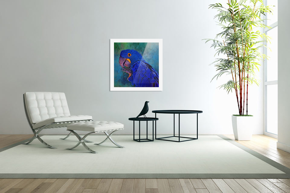 Hyacinth Macaw in Custom Picture Frame