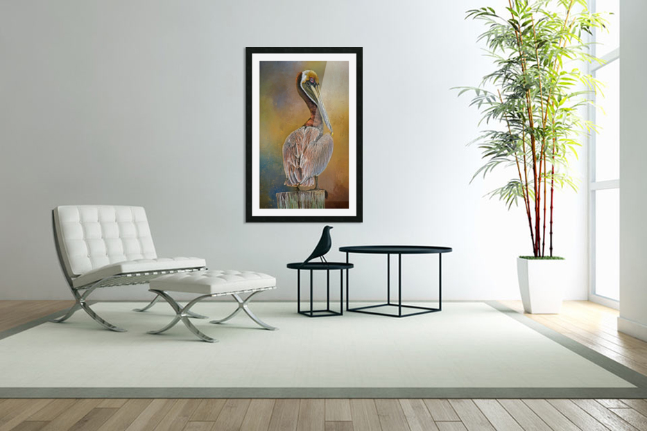 Brown Pelican In Breeding Plumage in Custom Picture Frame