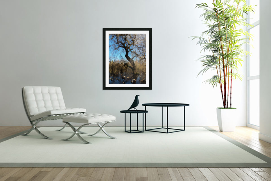 Bow Park duck pond in Custom Picture Frame