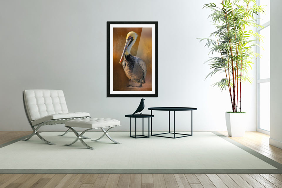 Brown Pelican Portrait in Custom Picture Frame