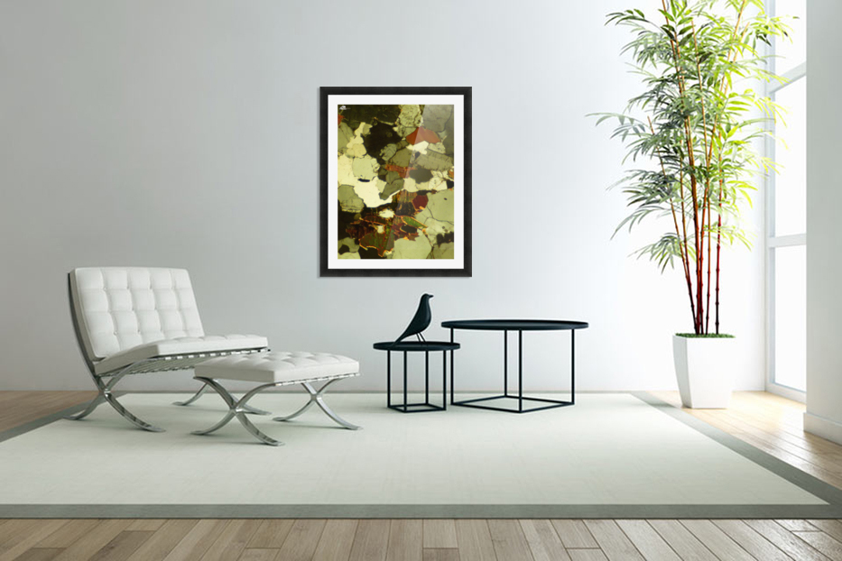Forest Primeval in Custom Picture Frame