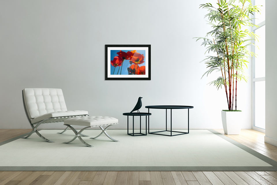 Poppies in the Sky in Custom Picture Frame