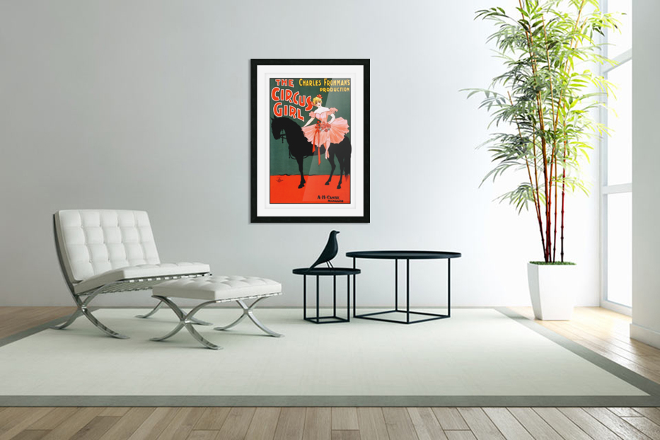 the circus girl vintage poster girl in Custom Picture Frame