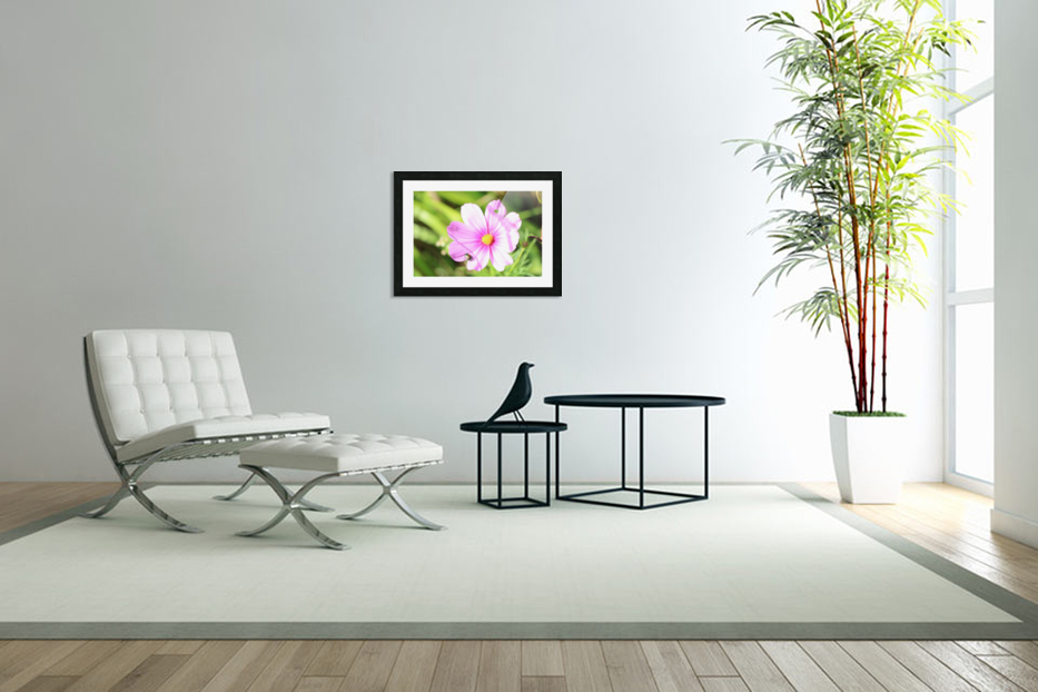 Flower Bug in Custom Picture Frame