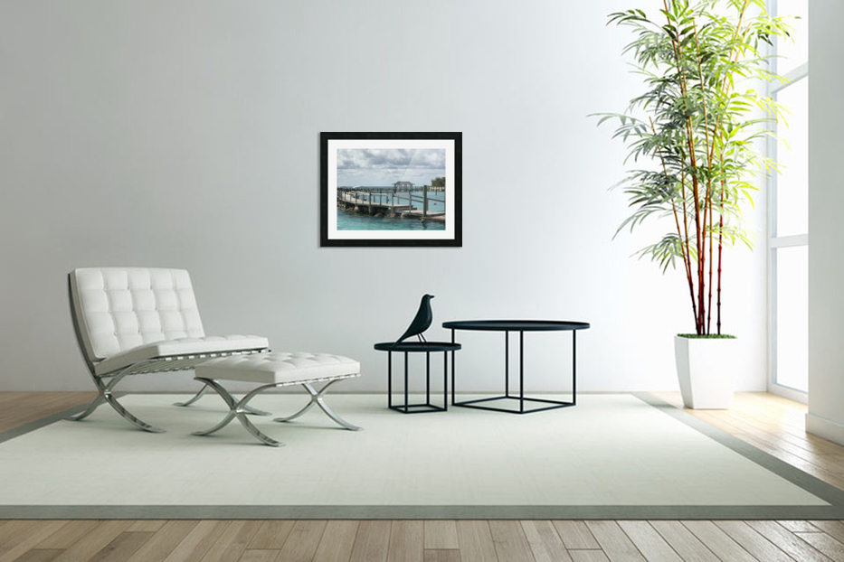 Dolphin Cove in Custom Picture Frame