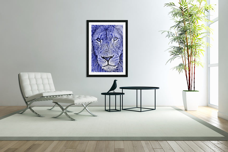 Male Lion Face thula art 5 in Custom Picture Frame