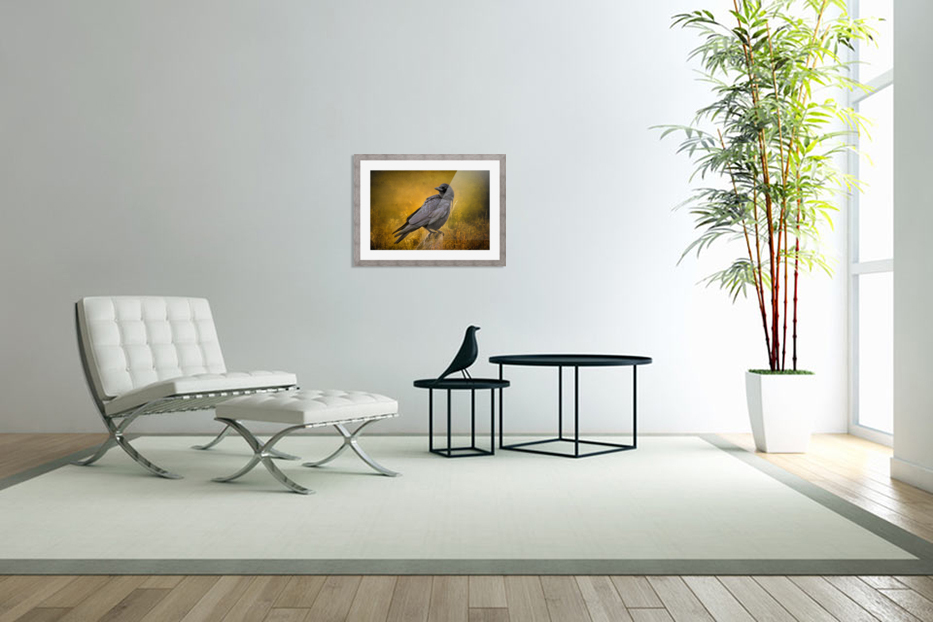Black Crow in Custom Picture Frame