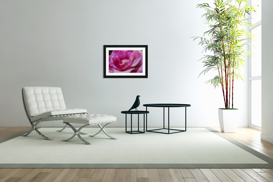Heart Of Pink Rose in Custom Picture Frame