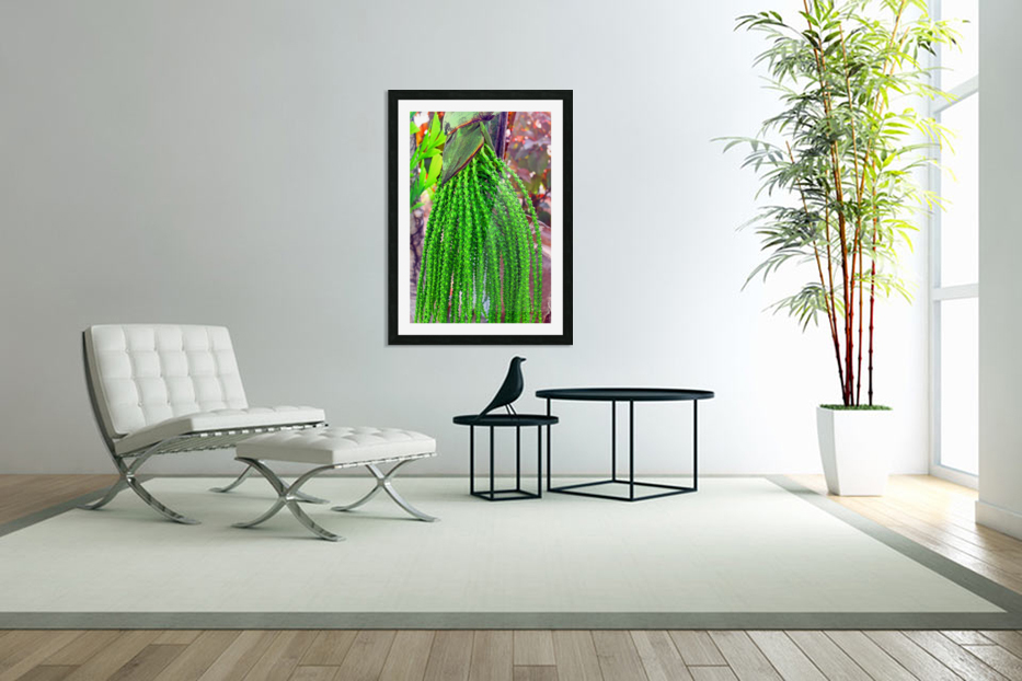 Plant Dreads in Custom Picture Frame