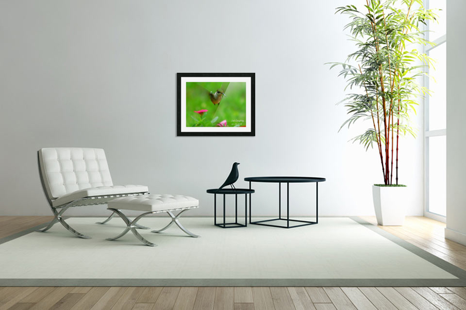 Ruby throated hummingbird in Custom Picture Frame