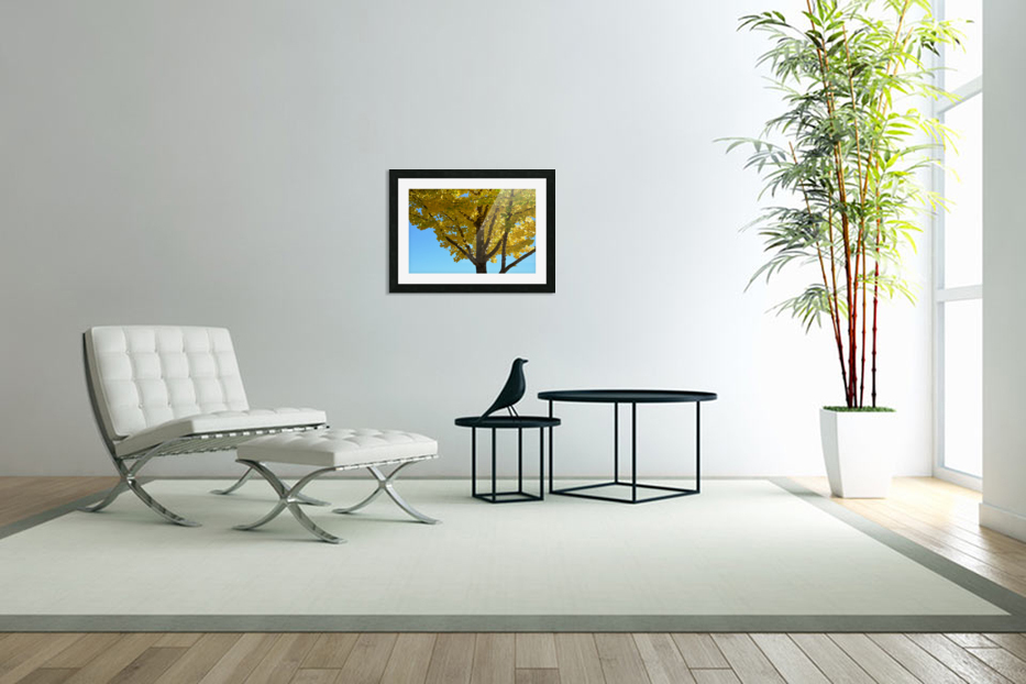 Yellow Fall Foliage Photograph in Custom Picture Frame