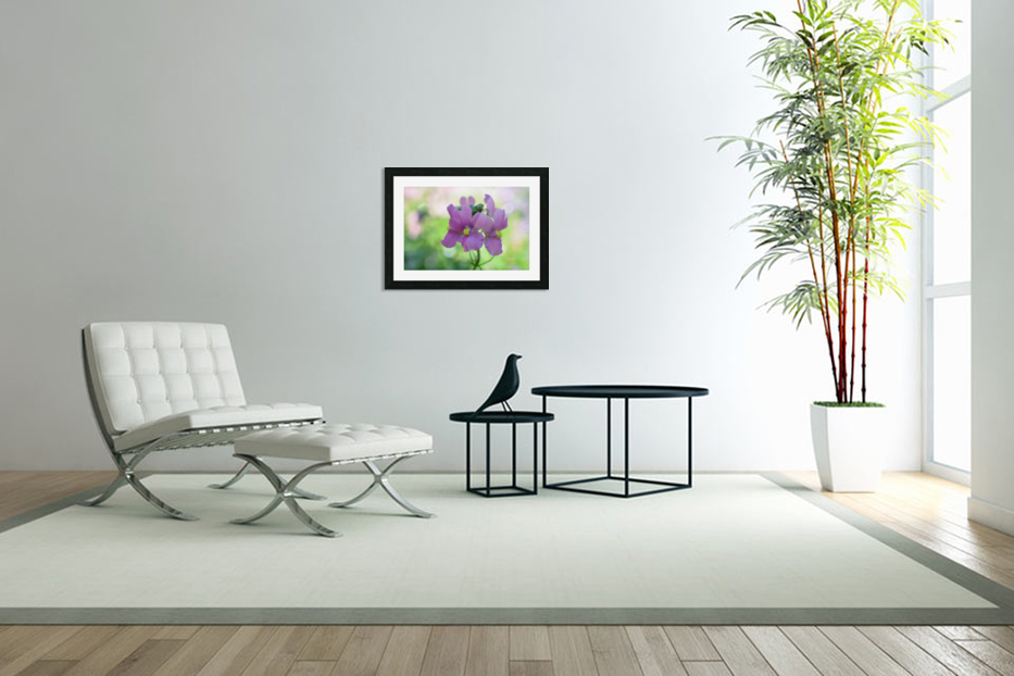 Purple Flowers Photograph in Custom Picture Frame