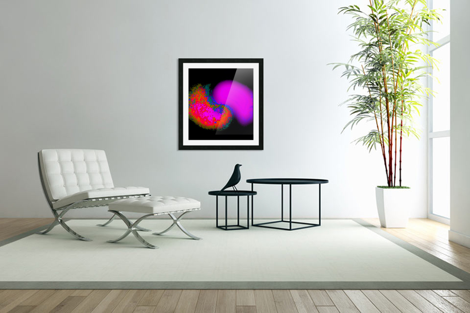 Organic Synergism 41 in Custom Picture Frame
