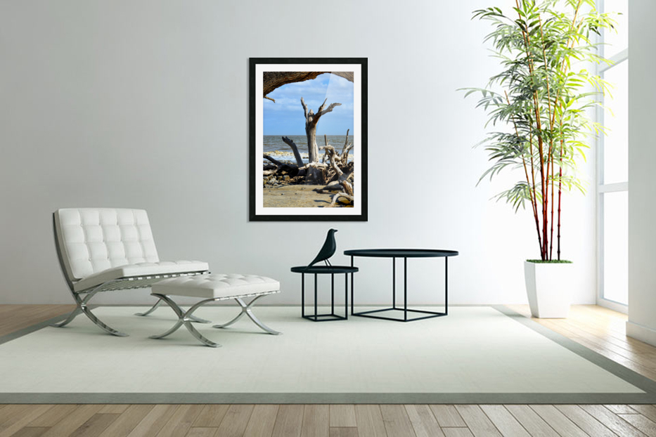 Driftwood Beach Uplifting in Custom Picture Frame