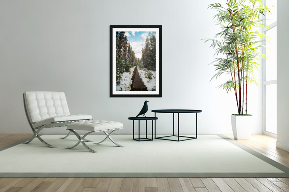 Winter Path in Custom Picture Frame